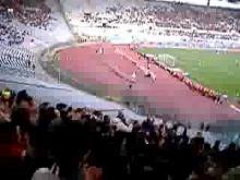 Ultras Reggina (olimpico)